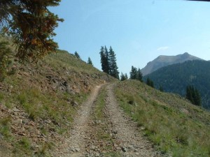 The 4x4 trail climbs and narrows